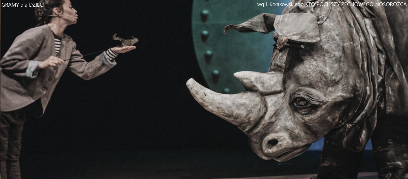 Kto pocieszy pechowego nosorożca